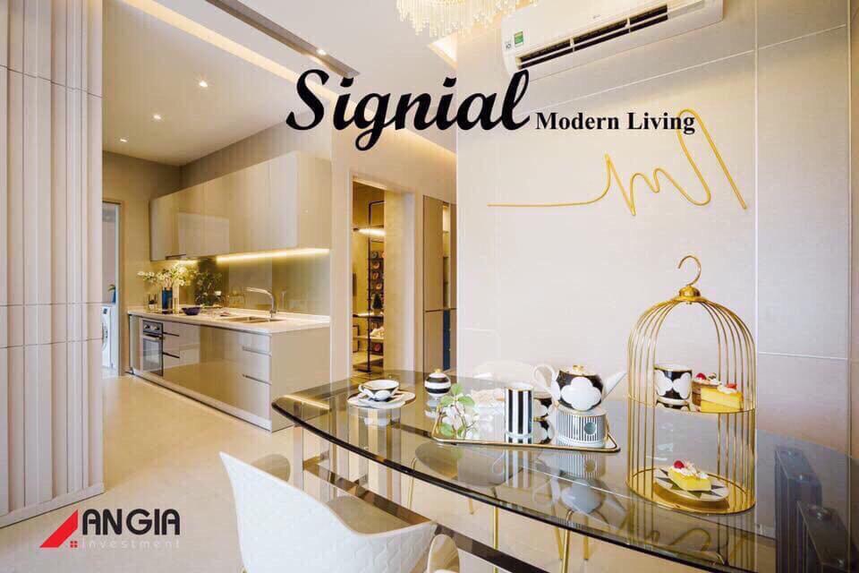 thiết kế dự án the signial